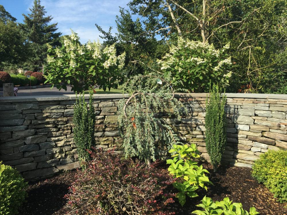 stone wall garden